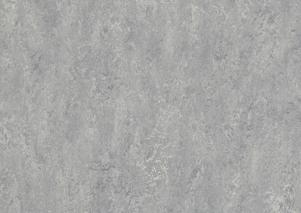 Натуральный линолеум Forbo Marmoleum Real 2621 Dove Grey. Фото N2